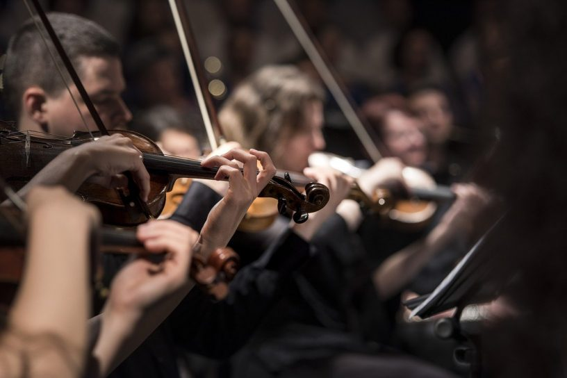 Violins Musicians Orchestra  - Pexels / Pixabay