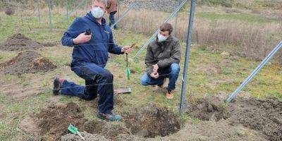 Bad Kreuznach: Partnerschaftsweinberg in Neuruppin wächst