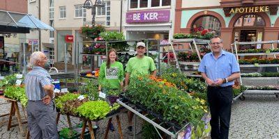 Mainz-Bingen: Standbetreibende für Binger Wochenmarkt gesucht