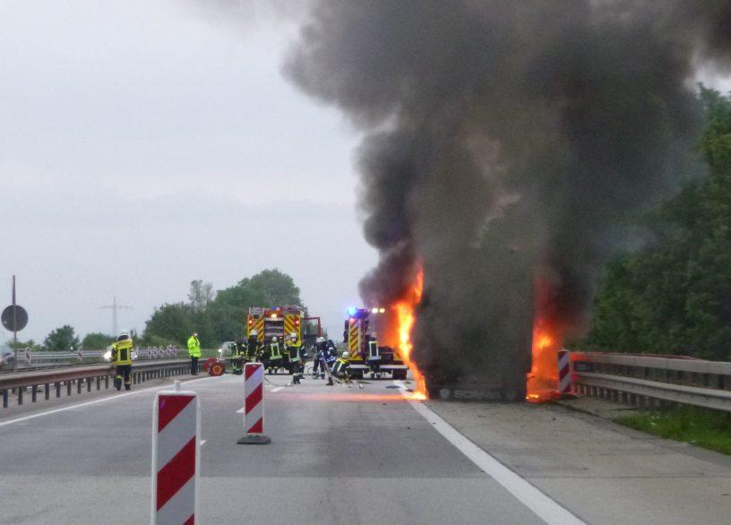 Olivenbäume auf Autobahn verbrannt