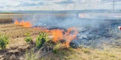 Bad Kreuznach: Brand auf Getreidefeld in Planig