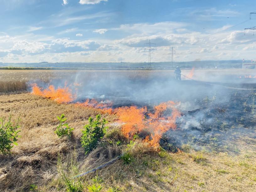 Brand auf Getreidefeld in Planig