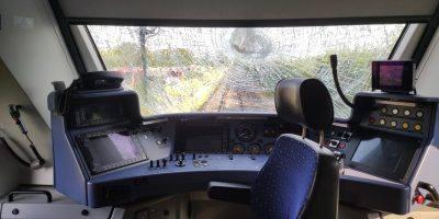 Mainz-Bingen: Regionalbahn mit Traktor kollidiert