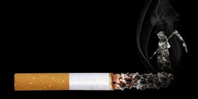 Cigarette Grim Reaper Smoke Embers  - SarahRichterArt / Pixabay