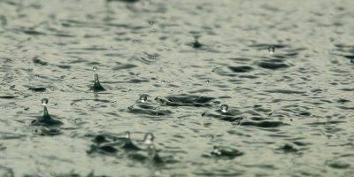 Water Raindrops Raining Wet Liquid  - diego_torres / Pixabay