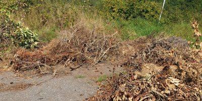 Birkenfeld: Abfall unerlaubt abgeladen